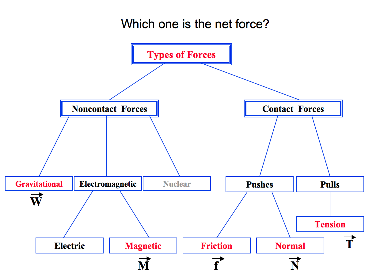 Physics homepage free body diagrams and weight forces pooptronica